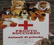 ospedale_delle_bambole_peluche