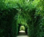 labirinto-franco-maria-ricci-percorso