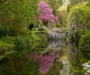 parco_naturale_giardino_di_ninfa_acqua