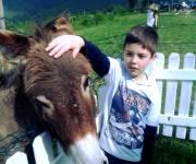agriturismo_la_cerra_bambini_e_animali