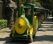 parco_didattico_della_preistoria_trenino