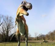 parco_le_pietre_del_drago_t_rex
